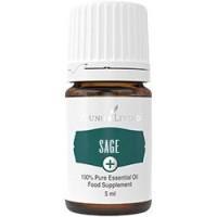 Young Living Ätherisches Öl: Salbei+ (Sage+) 5ml