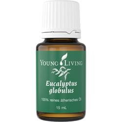 Young Living Ätherisches Öl: Eukalyptus Globolus 15ml