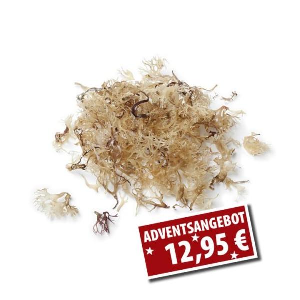Bio Irish Moss - Rohkostqualität 125g