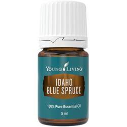Young Living Ätherisches Öl: Blaufichte (Idaho Blue Spruce) 5ml